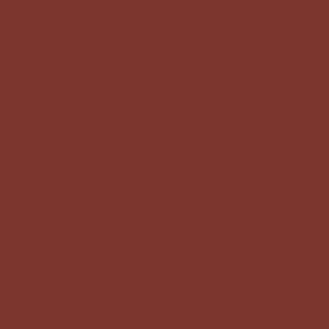 CJ4 - Paint - SW