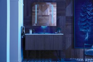 2018 Kitchen Bath Trends Recap From Kbdn Jamie Gold